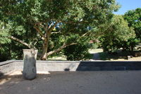 Looking East at Ballarat Primavera